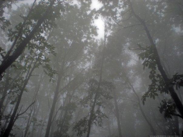 megano-nebbia-cammino-dei-monti-lattari