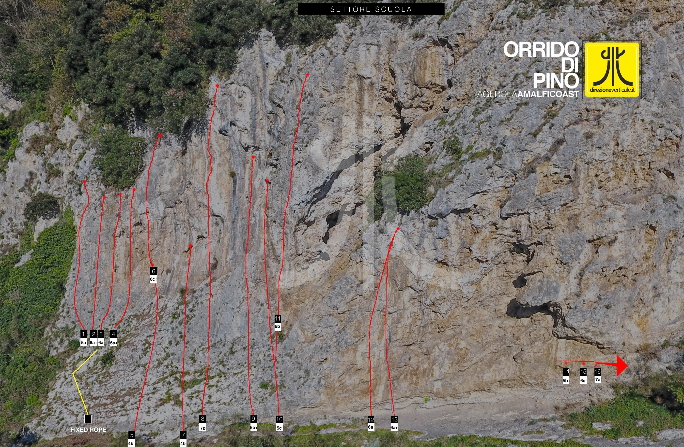 topos-drone-pino-con-gradi2