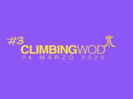 (Italiano) W.O.D. martedi 24 marzo 2020 – allenamento in casa per l'arrampicata